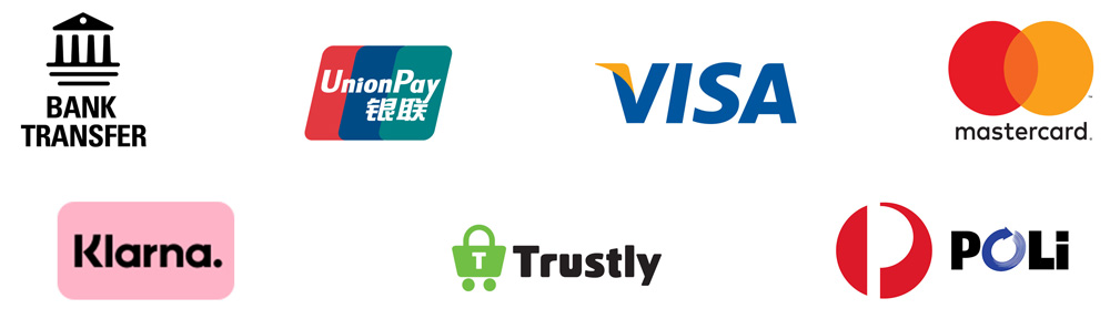 Payment logos available through the Western Union payment portal