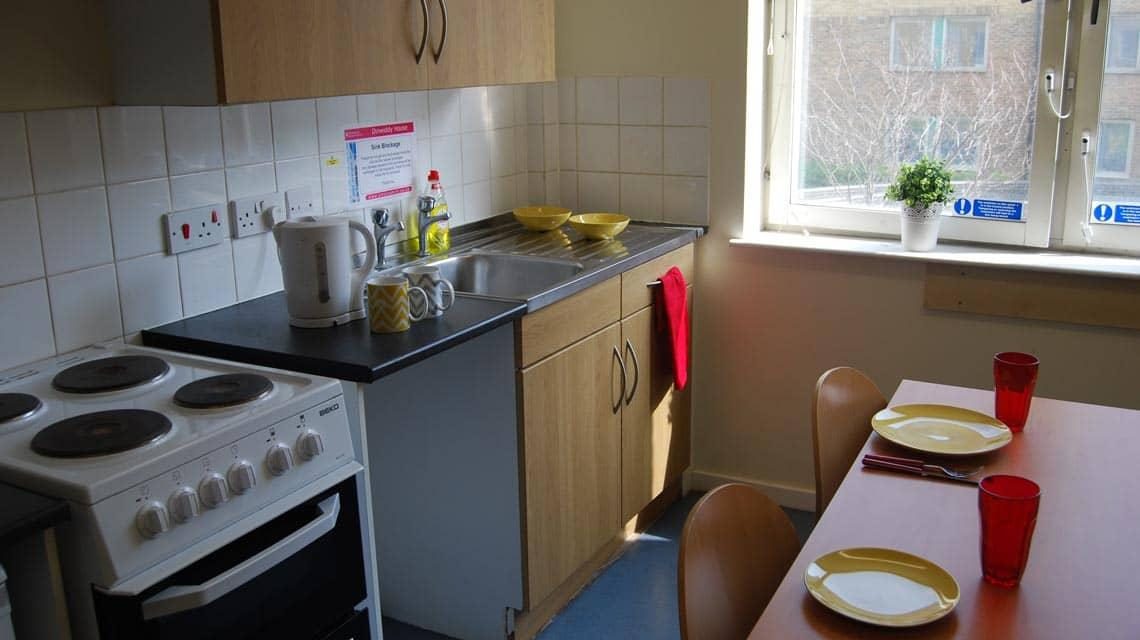 shared kitchen and dining room at Dinwiddy House